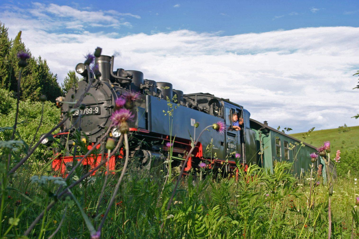 Ein Fahrt mit dieser Schmalspurbahn ist ein muss für jeden Eisenbahnliebhaber